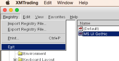 RegistryからExitをクリックして終了